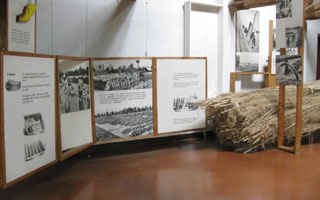 Una sezione della mostra dedicata alla canapa