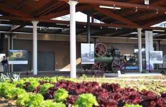 Il Museo della Civiltà Contadina a Fico