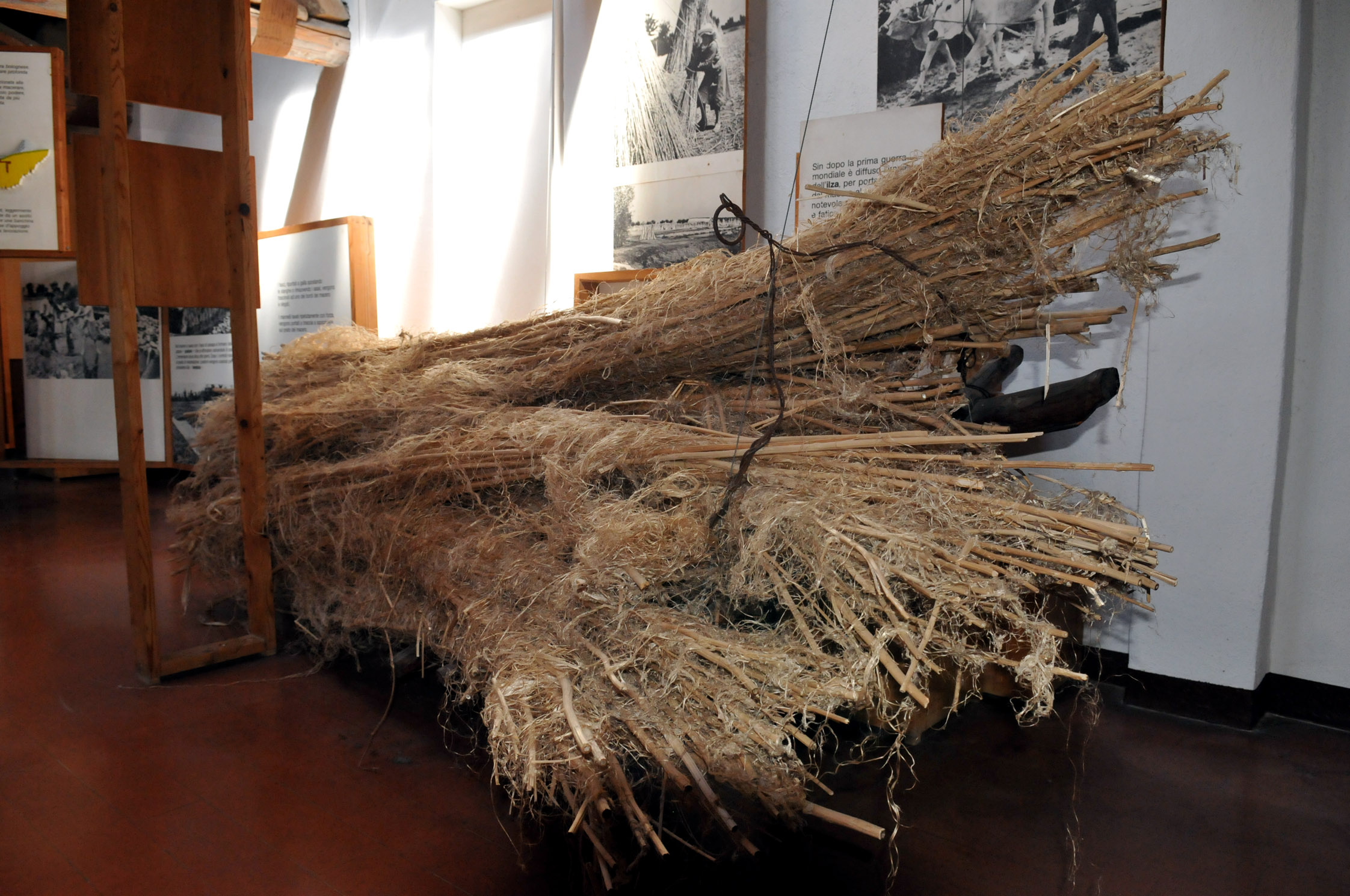 La sezione espositiva dedicata alla canapa
