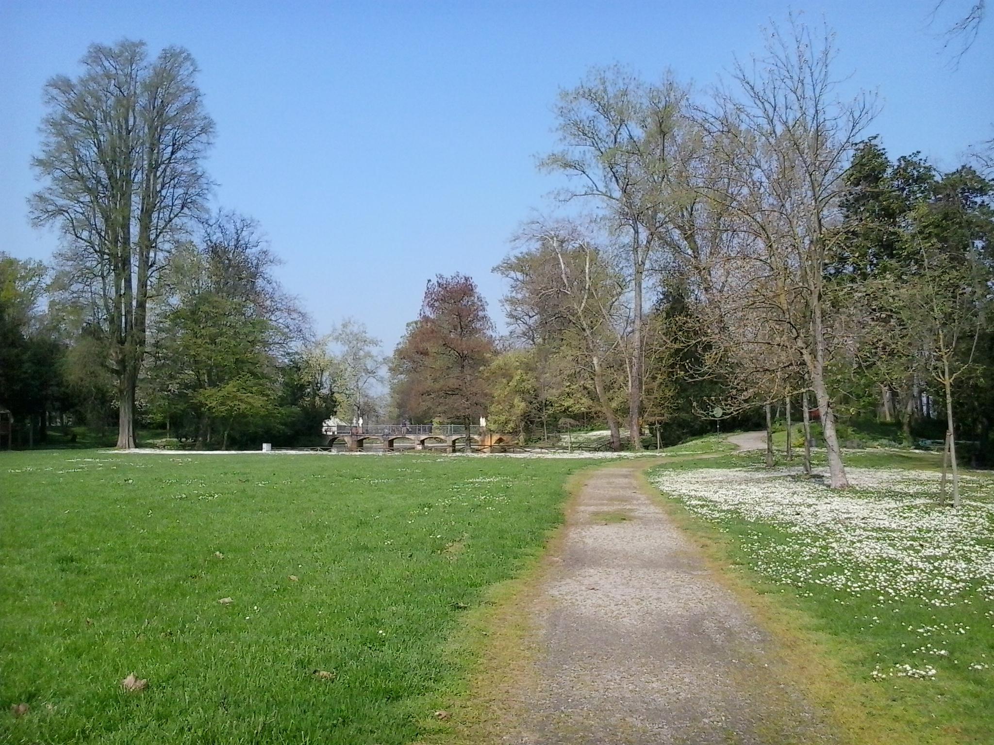 il parco in primavera